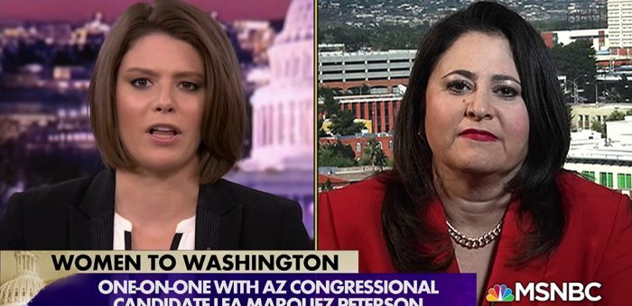 Lea Marquez Peterson on MSNBC is McSally 2.0